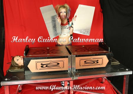 Harley Quinn and Catwoman Thinbox Sawing